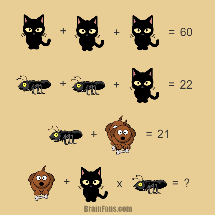 Brain teaser - Number And Math Puzzle - Riddle with answer - Riddle with answer with cat, ant and dog. Try to find the answer under one minute unles you are not able to comment;) Good luck!
